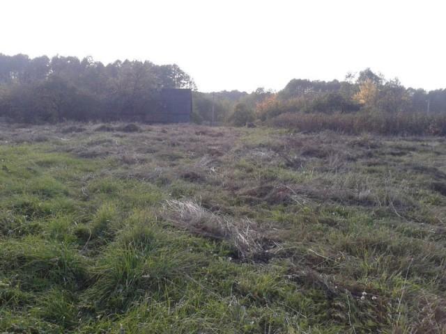 Участок земли под организацию агроусадьбы: Минская область, Логойский район, 90 км от МКАД