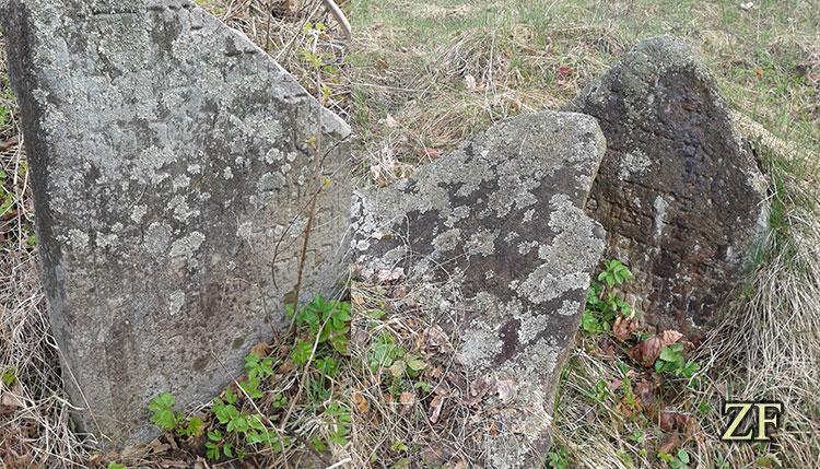 Остатки еврейского кладбища на берегу реки Крейщанка, возле деревни Крайск